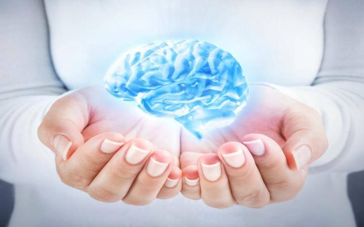 Мозг управляет нами, а не мы – мозгом