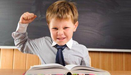 Анкета исследования уровня школьной мотивации Н.Г.Лускановой