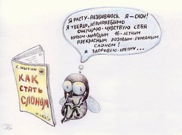 """Упражнение НЛП """"Мелочи жизни"""" (""""Слоны и мухи"""")"""